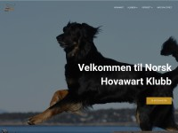 http://www.hovawart.no