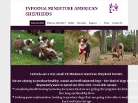 http://www.inferniaminiatureamericanshepherds.co.uk