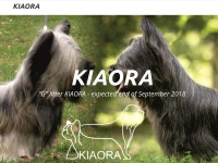http://www.kiaora.cz
