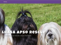 http://www.lhasaapsorescue.org