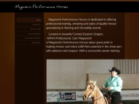 http://www.maganziniperformancehorses.weebly.com