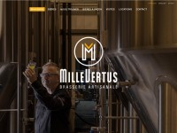 http://www.millevertus.be