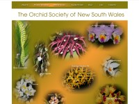 http://www.orchidsocietynsw.com.au/
