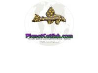 http://www.planetcatfish.com/core/