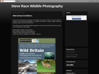 http://www.racebirding.blogspot.com/