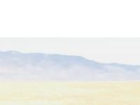 http://www.ranchcowboymusic.com
