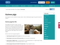 http://www.rspca.org.uk/allaboutanimals/pets/rodents/guineapigs