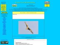 http://www.sennen-cove.com/birds.htm