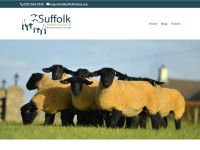 http://www.suffolksheep.org