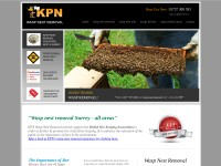 http://www.wasp-nest-removal.com/wasp-nest-removal-guildford.htm
