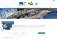 http://www.whalewatchliguria.it/turismo/