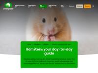 http://www.woodgreen.org.uk/pet_advice/filter/hamsters
