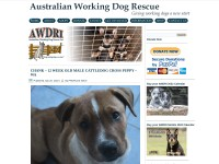 http://www.workingdogrescue.com.au/