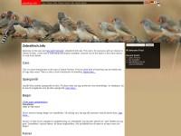 http://zebrafinch.info/?language=en