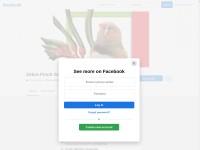 https://www.facebook.com/groups/zebrafinchsocietywa/